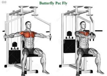 Bài tập ép ngực trong Butterfly Pec Fly