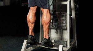tập cơ chân