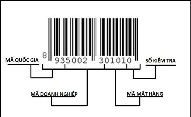 check-ma-code