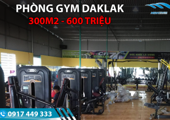 Setup phòng gym 300m2, 600 triệu