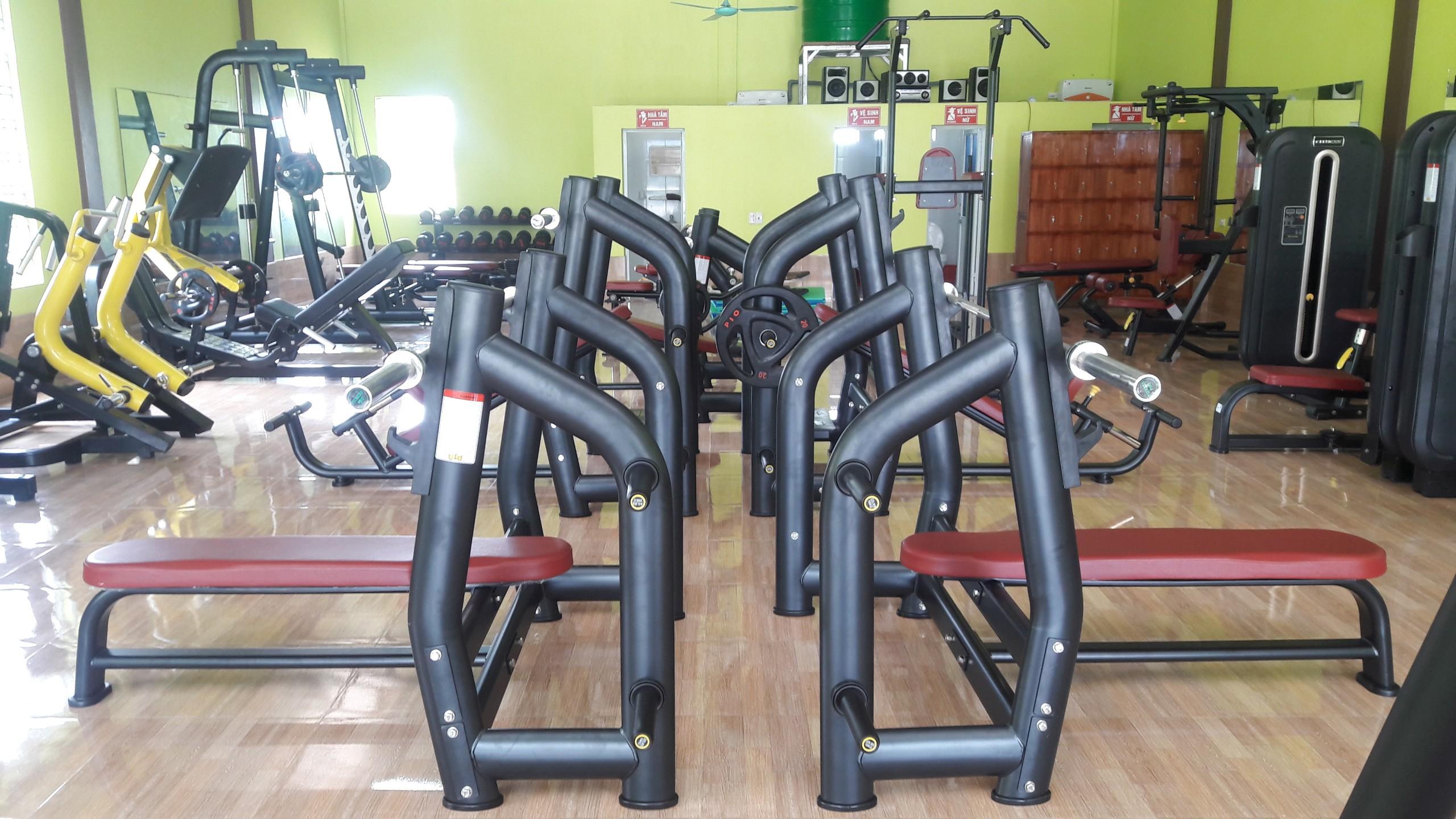 dự án phòng gym Nam Định - Golden Gym
